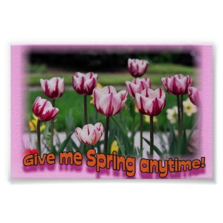 Give me Spring anytime 2 Poster