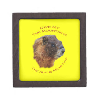 Give Me the Mountains...Marmot Jewelry Box