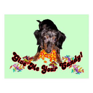 Give Me Your Candy Dachshund and Candy Postcard