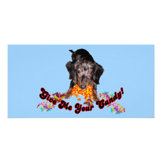 Give Me Your Candy Dachshund with Candy Photo Cards