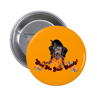Give Me Your Candy Dachshund with Candy Pinback Button