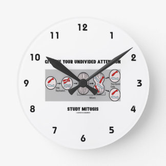 Give Me Your Undivided Attention Study Mitosis Round Clock