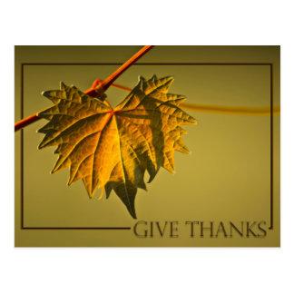 Give Thanks Fall Postcard