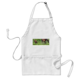 Give Thanks For Precious Gifts Adult Apron