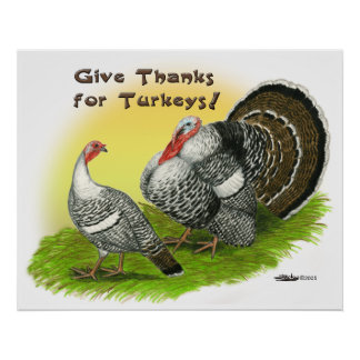Give Thanks For Turkeys! Poster
