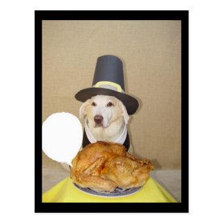 Give the turkey a line. postcard