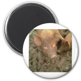 Give us a kiss 2 inch round magnet