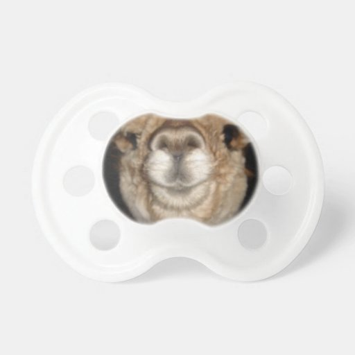 Give us a kiss! baby pacifier