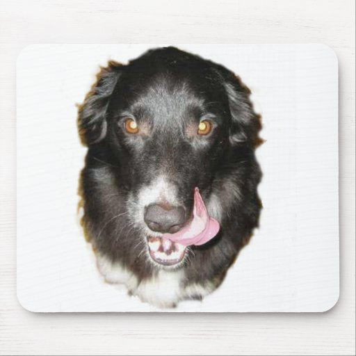 Give us a kiss Border Collie mouse pad