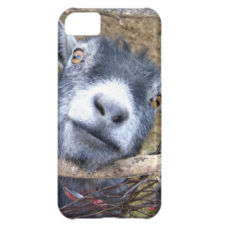 Give Us A Kiss... iPhone 5C Cover