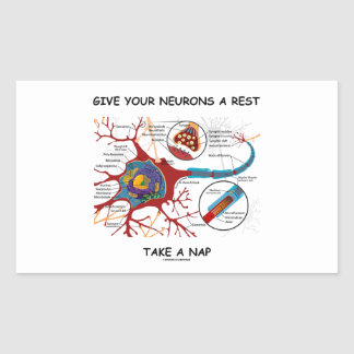 Give Your Neurons A Rest Take a Nap Neuron Synapse Rectangular Sticker