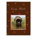 Giving Thanks With Turkey and Leaves Cards