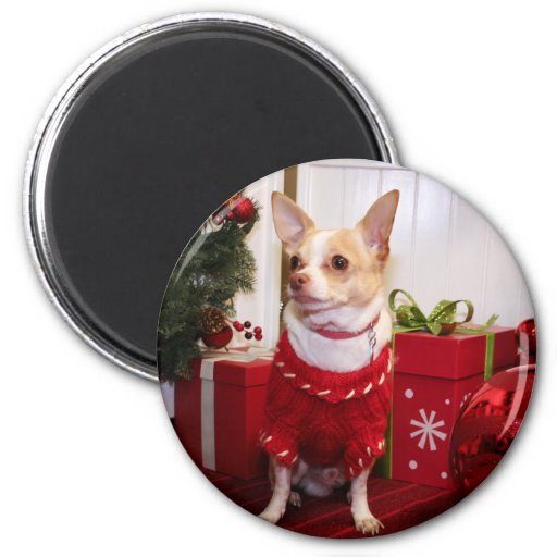 Gizmo - Chihuahua - Kahley Refrigerator Magnet