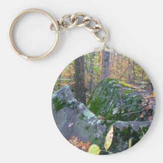 Glacial Boulders Montgomery County Pennsylania Keychain