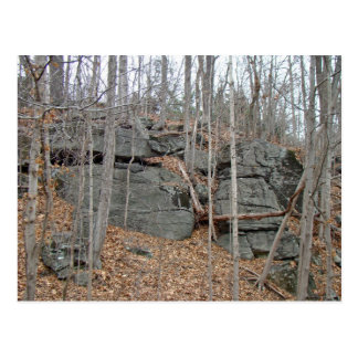 Glacial Boulders Montgomery County Pennsylania Postcard