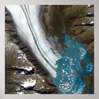 Glaciar Alaska del oso Póster
