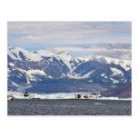 Glaciar de Columbia Tarjetas Postales