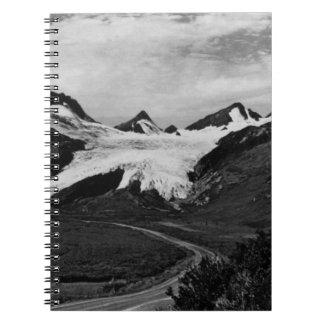 Glaciar de los E.E.U.U. Alaska Worthington en el Cuadernos