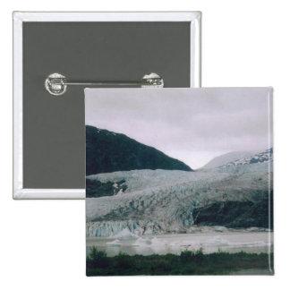 Glaciar de Mendenhall Pins