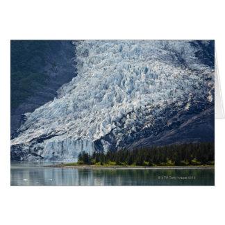 Glaciar de Wellesley en el fiordo de la universida Felicitacion