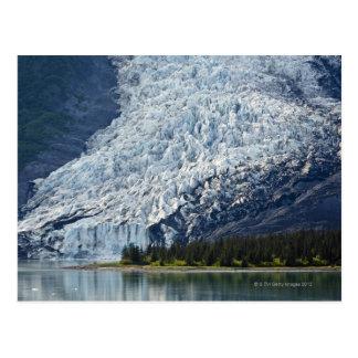 Glaciar de Wellesley en el fiordo de la universida Postales