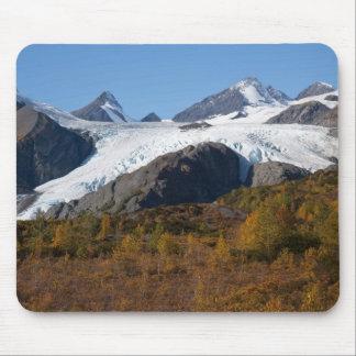 Glaciar de Worthington Alfombrilla De Raton