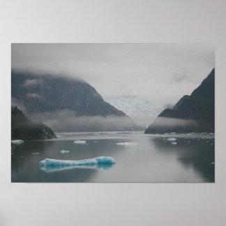 Glaciar del aserrador - fiordo del brazo de Tracy Posters
