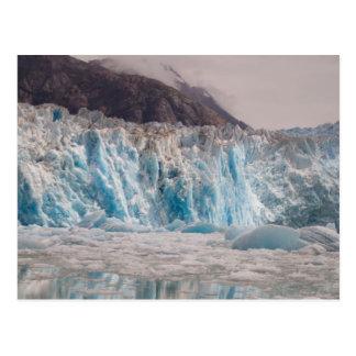 Glaciar del sur del aserrador tarjetas postales