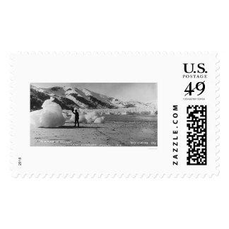 Glaciar que liga Alaska 1914 Sello Postal