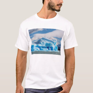 Glaciars,