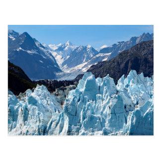 Glacier Bay 114 Postcard