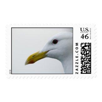 Glacier Bay Stamp 9 stamp