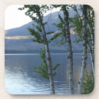Glacier National Park - Lake View Coaster