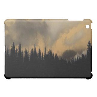 Glacier National Park Menacing Sky and Trees iPad Mini Cases