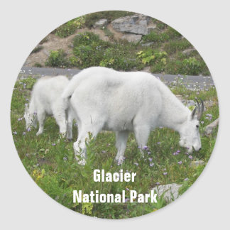 Glacier National Park Mountain Goats Photo Classic Round Sticker
