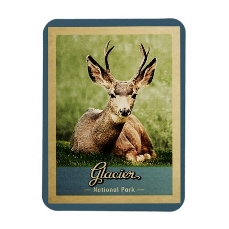 Glacier National Park Vintage Travel Deer Magnet