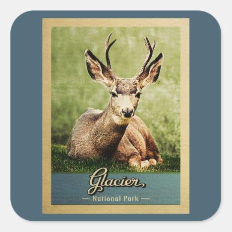 Glacier National Park Vintage Travel Deer Square Sticker
