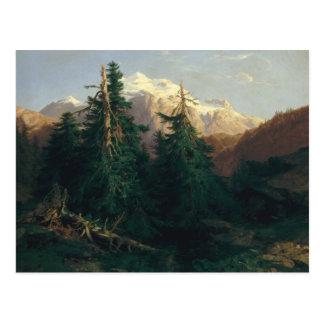 Glacier, Rosen Lanigletscher, 1854 Postcard