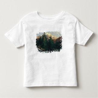 Glacier, Rosen Lanigletscher, 1854 T-shirt