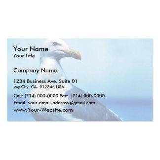 Glacous se fue volando gaviotas tarjeta personal