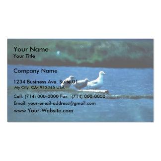 Glacous se fue volando gaviotas plantilla de tarjeta de negocio