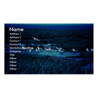 Glacous se fue volando gaviotas plantillas de tarjeta de negocio