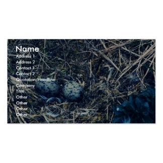 Glacous se fue volando gaviotas plantillas de tarjetas personales