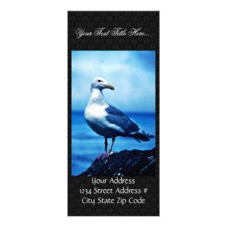 Glacous se fue volando gaviotas diseño de tarjeta publicitaria