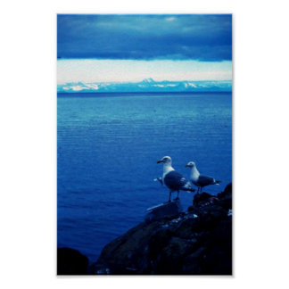 Glacous se fue volando la gaviota posters