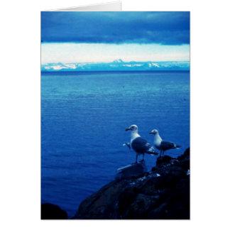 Glacous se fue volando la gaviota tarjeta