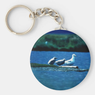 Glacous Winged Gulls Keychain