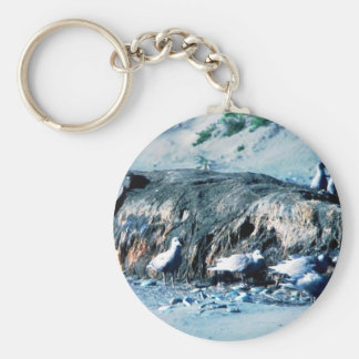 Glacous Winged Gulls Key Chains