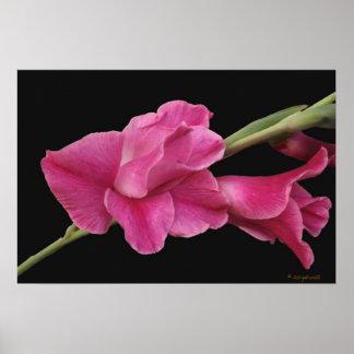Glad Floral Poster