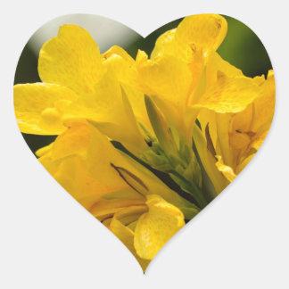 Gladiolas amarillo colcomanias de corazon